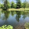 【穴場的な釣り堀・八重つり湖園】北海道生田原の管理釣り場で釣り遊び