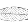 Blenderでトゥーン調等で使える輪郭線の作成方法をご紹介!