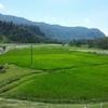 ポカラ〜ヒマラヤ山脈の見える美しい街でひたすら吐く話〜
