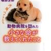動物病院院長の本