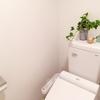 トイレに植物を飾って健康に