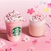 2020年スタバの桜フラペチーノはさくらミルクプリン&ホットはさくらミルクラテ