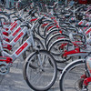「埼玉県で自転車保険加入が義務化」のニュースを聞いて