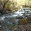 山室川渓流釣り