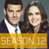 ボーンズ-シーズン12(ファイナル)はhuluフールー,Netflix,dTV,U-NEXTで視聴できるか!?