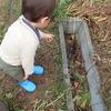 1歳息子と自然探検!