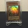 遊戯王カード 限定プロモ WCPS-AE703 Testament of the Arcane Lordsを入手したので解説するよ!