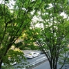 代々木上原不動産 賃貸 毎日速報!!5/14(木)