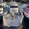 1月3日(日)釣行記 沖の島沖磯 白岩/バラス、姫島南/穴の口
