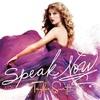 Speak now-Taylor Swift 歌詞 和訳