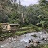 貴船神社とこまねこまつりに行ってきました~貴船神社では台風21号による自然の脅威を実感!ここでさらにパワーをゲット出来るか!?