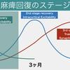 サクッと紹介! 運動麻痺回復のステージ理論:② Corticospinal Excitability(1st stage recovery)