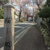 近所のお花見スポット探訪・・・福山雅治さんの曲「桜坂」までサイクリングで30分くらいです!