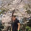 5008 靖国の桜
