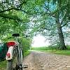 【ドイツ】自然で癒されよう!ドイツの田舎ってこんな感じ。