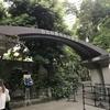 THE MATSURI SESSION@日比谷野外大音楽堂を観る
