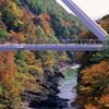 紅葉の名所…高津戸峡