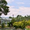 9月も植物園 Ⅳ