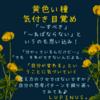 マヤ暦エネルギー黄色い種の13日間が始まるよ(*^^*)気付き揺すぶられる期間です☆