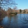 この春最初の八郎沼公園散歩…