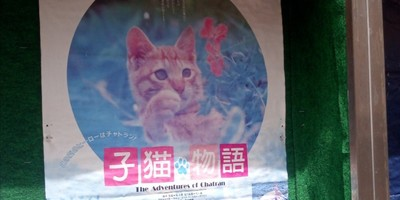 子猫物語チャトラン、ついに令和入りを果たす! 福原国際東映の映画ポスター
