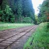 小湊鉄道周辺をRolleiflexStandardで撮る