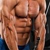腕をたった◯日間で大きくするトレーニング方法