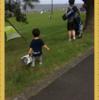 テントがうちにやってきた!城南島ピクニックで大活躍