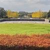 昭和記念公園〜東京でも、空が広い場所がある。