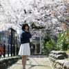 COCOROちゃん その16 ─ 桜よ咲いてよ咲いて咲いてお散歩撮影会2021 ─