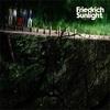 Friedrich Sunlight / Friedrich Sunlight