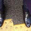 晴れた日も雨の日もいける黒靴!!(^^)