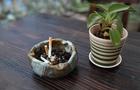 禁煙するなら知っておきたい離脱症状とその原因。