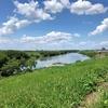 江戸川を歩く その2 矢切の渡しから野田の醤油工場横まで