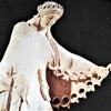 トピックス(9)「イシュタル」の表象(3-26)