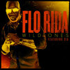 Flo Rida - Wild Ones ft. Sia 歌詞和訳