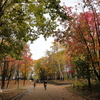 公園へ行こう ― 月寒公園 ―
