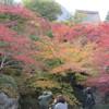 箱根(2)・お気に入りの紅葉スポット