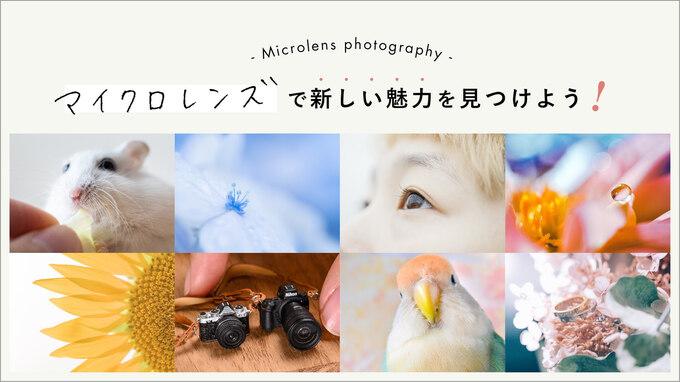 マイクロレンズで新しい魅力を見つけよう!被写体別の接写のコツと写りを生かした表現のアイデア