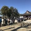 今年の初詣(1)(渋川神社、明治神宮)