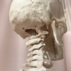 筋肉が張っているのは骨が歪んでいるから。