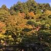 秋のブライダル