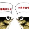 新しいパレハが仲間入り プラグ編!!