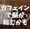 コーヒーで脳が縮むかも?長期的にはカフェインが認知パフォーマンスを落としそうな件