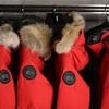 カナダグースが毛皮の使用を終了。各社ファーフリーへ意向の動き。