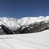 白馬岩岳スキー場 カービングが楽しめるお薦めコース5選。snownaviに載るならこのコース!