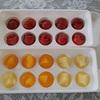 100均アイテムで作る☆夏の果物たっぷり九龍球♪♪