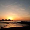 聖籠町 網代浜