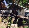 大通り沿いにあるオシャレカフェ 「Tiger Ted Cafe」