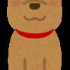 犬にまつわるボキャブラリー